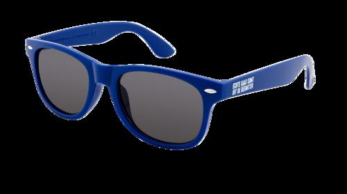 Beemster Zonnebril Blauw